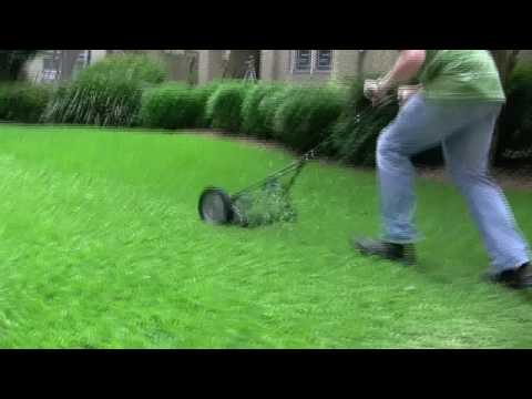 Four Push Reel Mowers: The Ultimate Solution