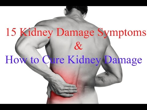15 Kidney Damage Symptoms