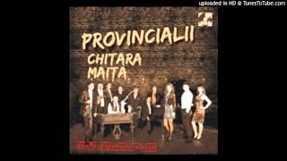 Download 02 - 02 Provincialii - Lume nu esti dreapta