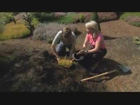 Heather: Demands Drainage