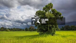 Calibre - Addict