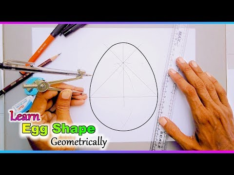 Learn a perfect egg shape with geometry