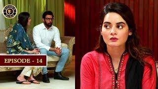 Download Hassad Episode 14 | Minal Khan | Top Pakistani Drama Video