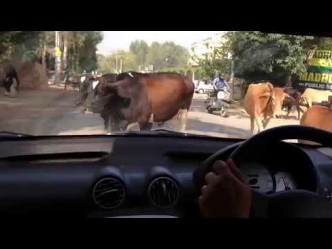 Learning how to drive in India part 1