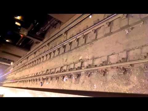 NYC Subway Rat Activity (34th St., Penn Station) 9:30pm