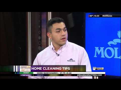 MOLLY MAID of Greater Little Rock Holiday Cleaning Tips