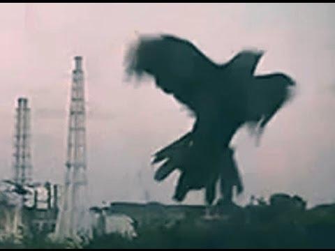 NEVER FORGET - Fukushima Daiichi Nuclear Power Video #34