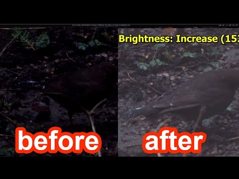 How to make video Brighter or Darker in KMPlayer