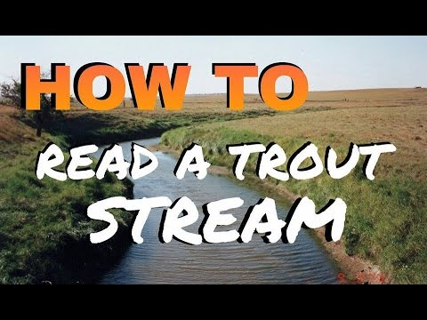 How To Read a Trout Stream and Find Trout - Fly Fishing 101 for Beginners