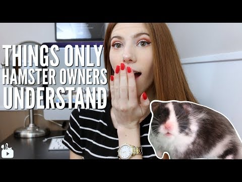 THINGS ONLY HAMSTER OWNERS UNDERSTAND