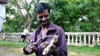 the mysore rebab player