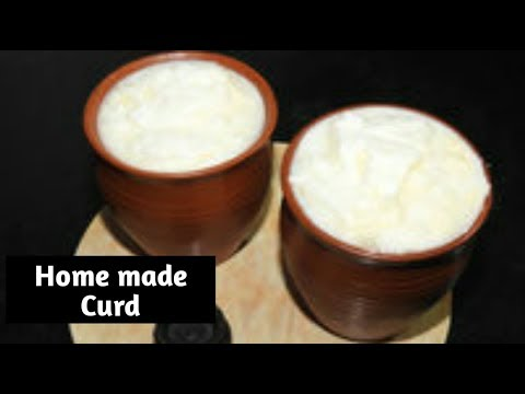 Perfect Curd receipe in Kannada/ How Make Thick Curd Receipe/ Savi Bhojana