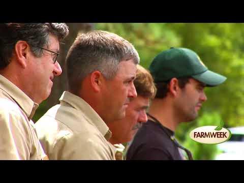 Farmweek   Wild Hog Trapping   August 24, 2017