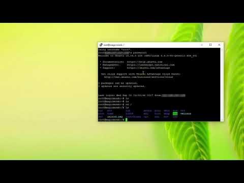 Digital Ocean VPS Linux Ubuntu no files in root folder
