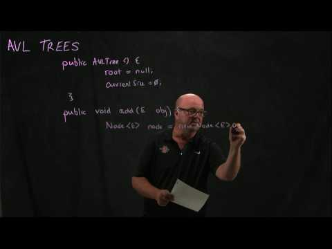 AVL Tree 3 Adding a node