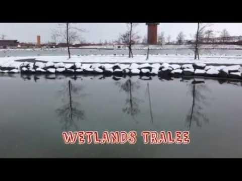 Let it snow,let it snow @ Wetlands Tralee 2018