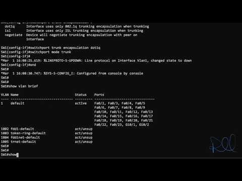 Configuring Cisco Trunk Ports