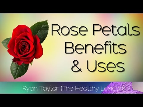 Rose Petals: Benefits and Uses