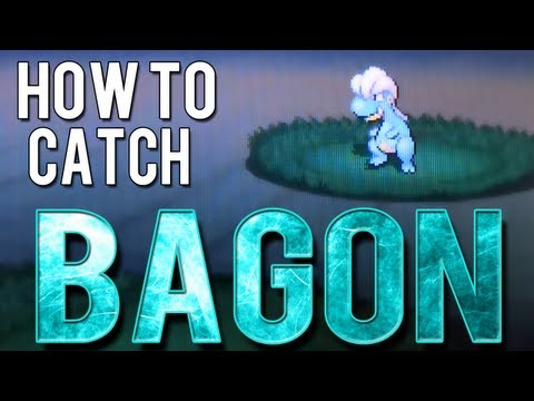How to Catch Bagon - Pokemon Black 2 and White 2