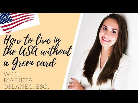 HOW TO LIVE IN THE USA WITHOUT A GREEN CARD - Part 1🇺🇸☑️