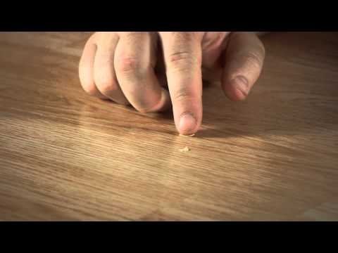 How to Restore My Laminate Floors to Look New Again : Let's Talk Flooring