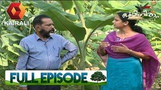 Bhoomigeetham | 25th February 2017 | Full Episode