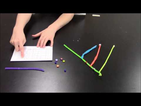 Building Phylogenetic Trees   A Demo for Teachers