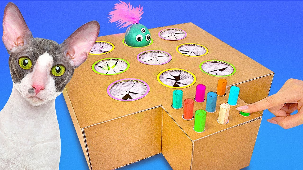 2 DIY Crafts For Your Cat    Cardboard Food Dispenser And Whack-a-Mole Toy