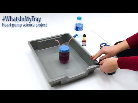 #WhatsInMyTray - Heart Pump Science Project