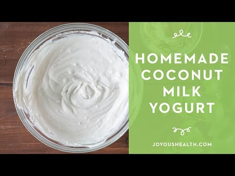 How to Make Homemade Coconut Milk Yogurt