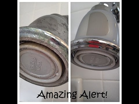 Deep Clean a Shower Head with Vinegar