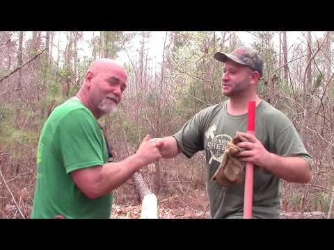 Log Cabin Build: Fellin', Buckin' and Skinnin' Logs
