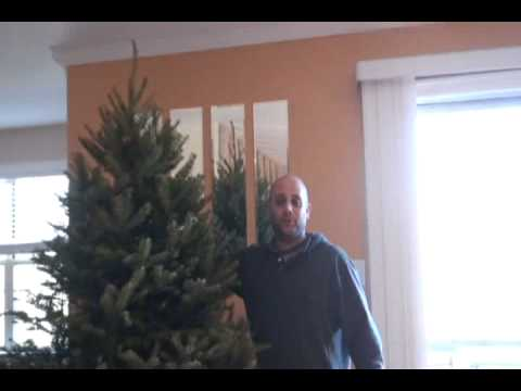 How to get rid of your Christmas Tree