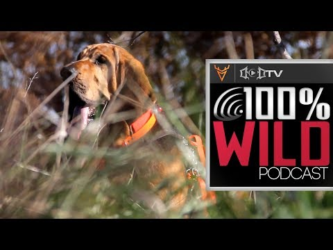 Scouting with Dogs - 100% Wild Podcast 67