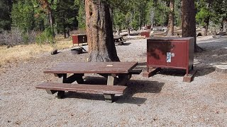 Aspen Group Campground (Inyo National Forest), Rock Creek near Mammoth Lakes, California