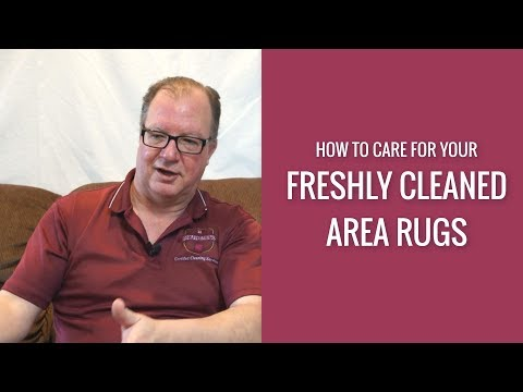 How to care for your newly cleaned area rugs by Rendall's Cleaning