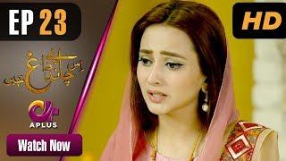 Drama   Is Chand Pe Dagh Nahin - Episode 23   Aplus ᴴᴰ Dramas   Zarnish Khan, Firdous Jamal