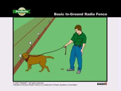 Training Your Dog: PetSafe In-Ground Radio Fence - www.petsafe.net