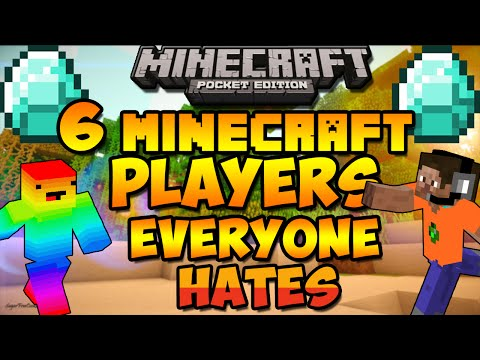 6 Types Of Minecraft Players Everyone Hates