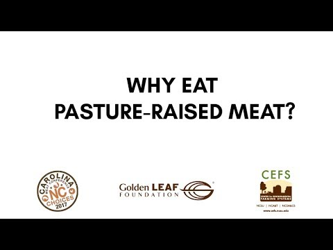 Why eat pasture-raised meat?