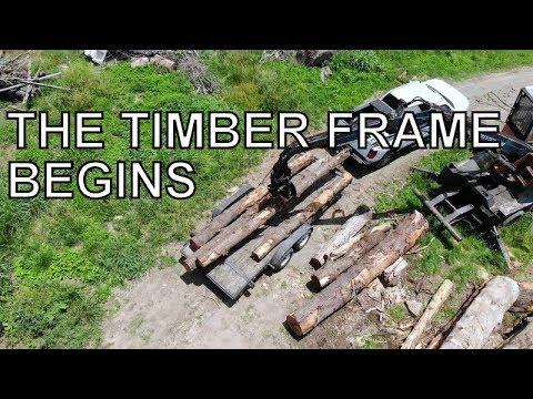 THE TIMBER FRAME BUILD BEGINS: EASTERN HEMLOCK LOGS FOUND!