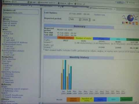 Checking Traffic & Statistics in cPanel