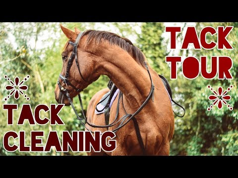 WHAT TACK I USE + TACK CLEANING ROUTINE