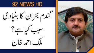 PMLN Malik Ahmed Khan comments on Wheat crisis