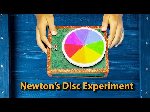 How to Make a Newton's Disc || Disappearing Colour disc || Working Science Model