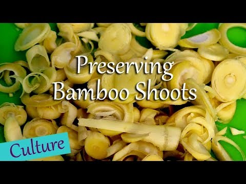 Preserving Bamboo Shoots