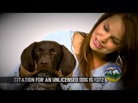 Deschutes County Dog Licensing - License Them!