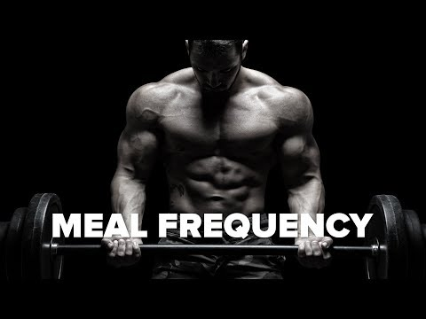 Does Meal Frequency Matter?