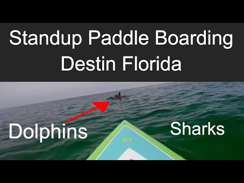 Standup Paddle Boarding (SUP) in Destin Florida