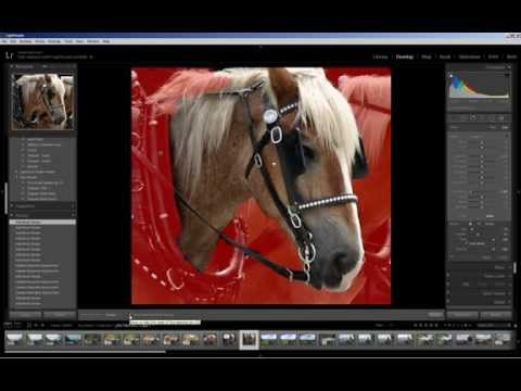 Lightroom 5: Radial Filter and Adjustment Brush